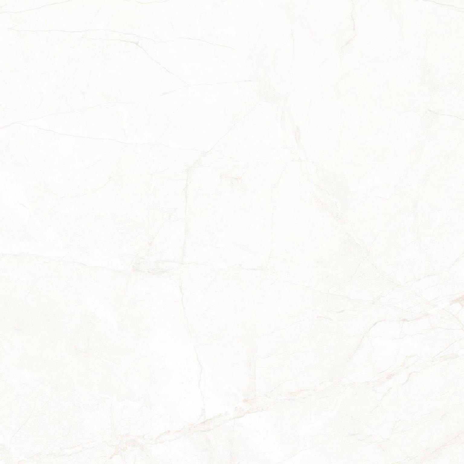 Sary Blanco | Porcemall
